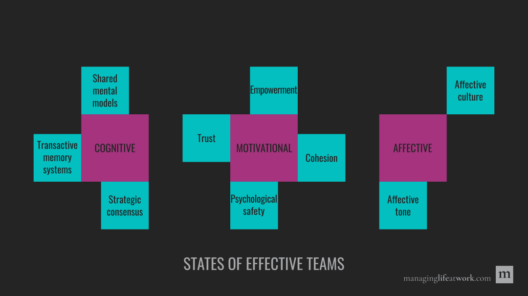 States of effective teams: Cognitive, affective, and motivational.