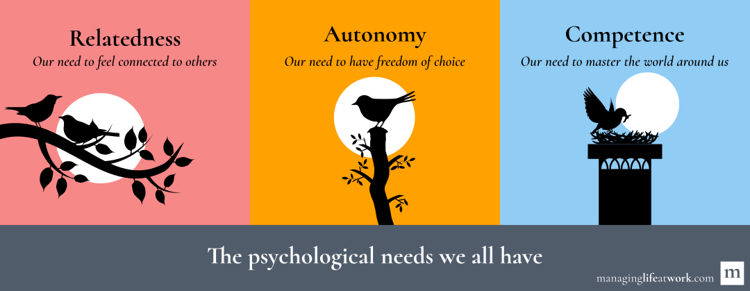Our psychological needs: relatedness, autonomy, and competence.